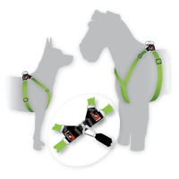 Black Dog Step-In Harness